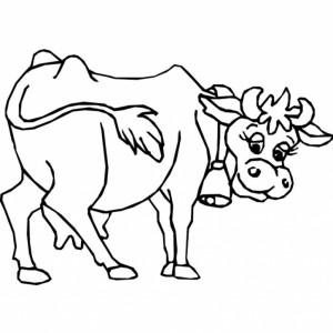 Cartoon Drawing Carabao Beef Cow Drawing Clipart Panda Free Clipart Images